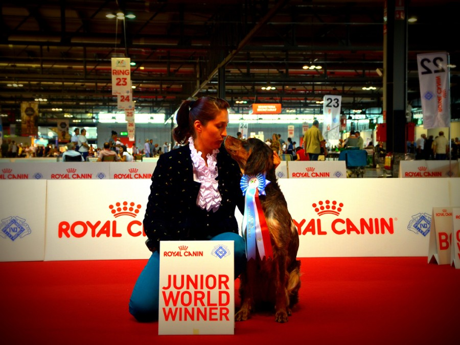 Artemis-world-dog-show-milano-2015