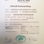 KJPV-Schweißsonderprüfung-IIIc