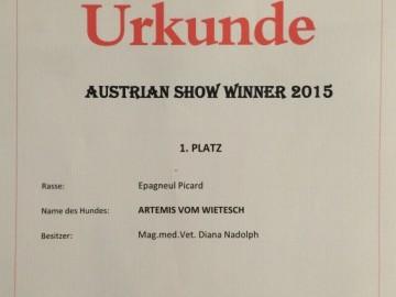 Artemis vom Wietesch wird Austrian Show Winner 2015!