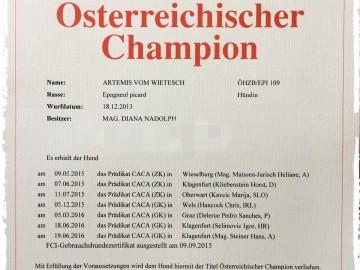 Artemis ist nun offiziell österreichischer Champion!