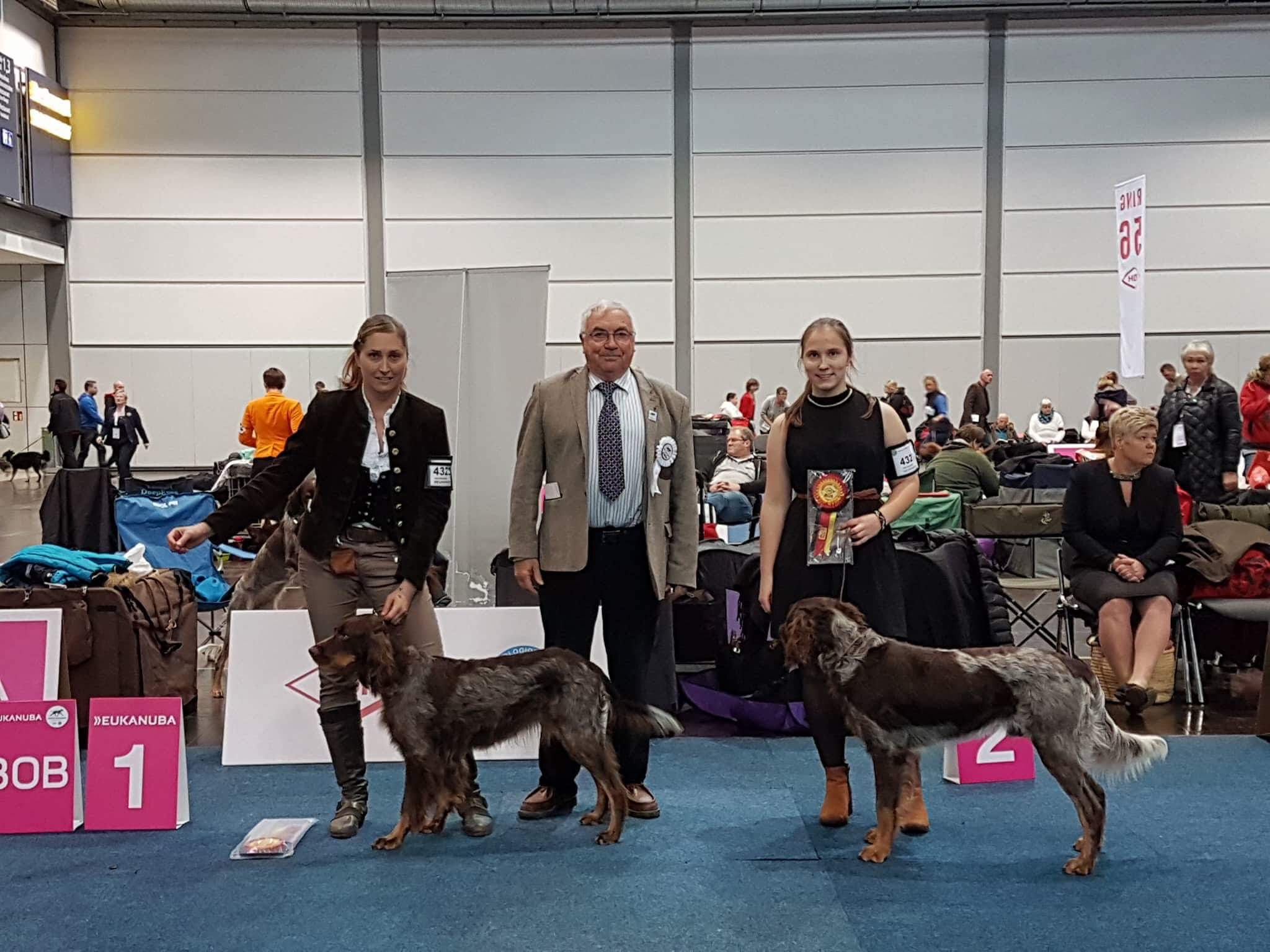 World Dog Show 2017 in Leipzig_1
